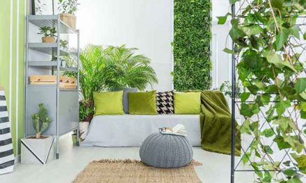 Create a Healthy Home with Negative Ions